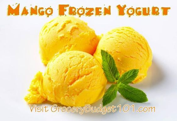 Create your own amazingly simple mango frozen yogurt (without an ice ...