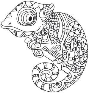 Zentangle Karma Chameleonimage Ferdinand Pinterest Frben