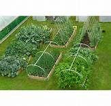 Garden Hoops for Raised Beds - Bing Images