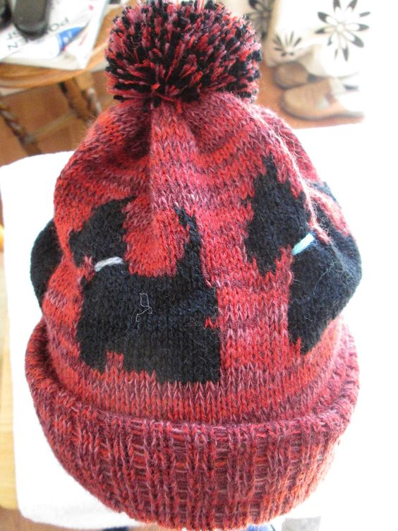 Knitted hats, Scottie dogs and Hats on Pinterest