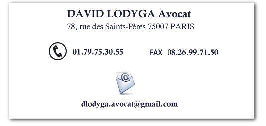Avocat en droit du travail Paris, David Lodyga 01.79.75.30.55