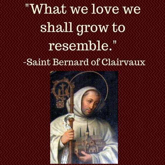A great quote by Saint Bernard of Clairvaux, an Abbot and Doctor of the Church…