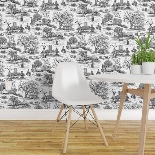 Austin Texas Toile White Removable Wallpaper Perfect Wallpaper Wallpaper