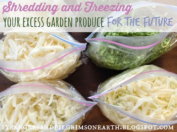 Strangers & Pilgrims on Earth: Shredding and Freezing Your Excess Garden Produce