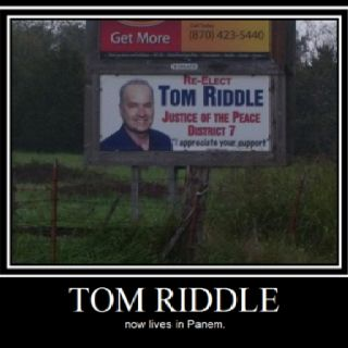 Tom Riddle moved to District 7....Panem?