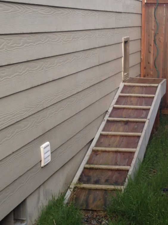 Doors dogs and dog runs on pinterest - Installing a dog door in an exterior wall ...
