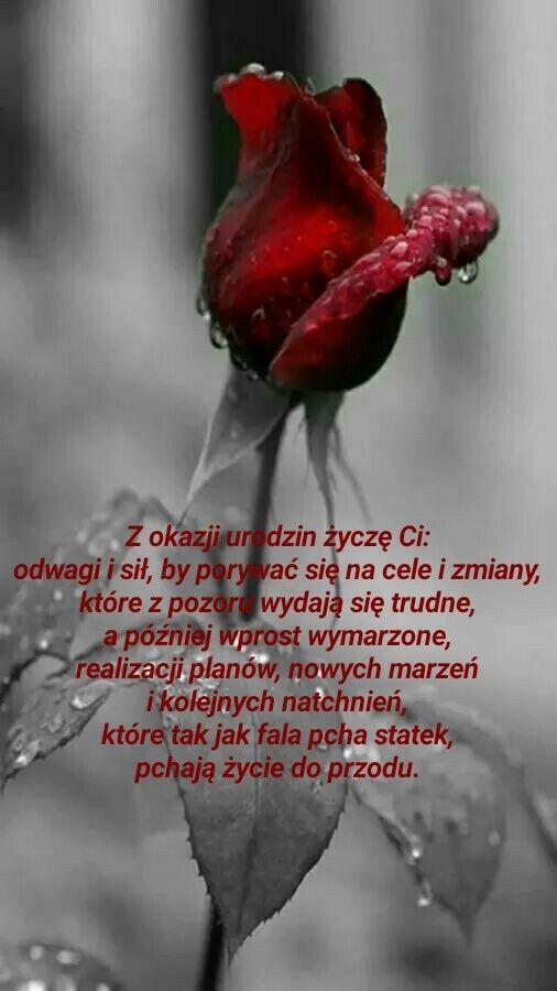 Pin By Jokoro On Aforyzmy Birthday Quotes Birthday Wish
