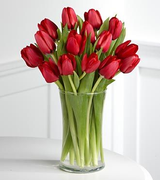A huge bouquet of tulips.  Like, 2 or 3 times this size.  All in a pretty orange-red color.