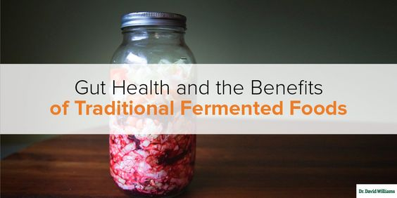 Gut Health and the Benefits of Traditional Fermented Foods