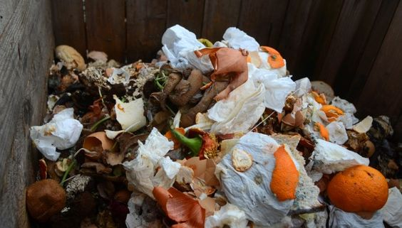 In Frankreich werden #Lebensmittel ab sofort nicht mehr in den #Abfall geworfen. http://www.codecheck.info/news/Frankreichs-Supermaerkte-duerfen-Lebensmittel-nicht-mehr-wegwerfen-119187 #Konsum
