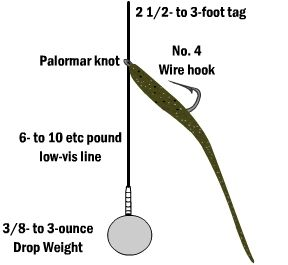 Key tips for fishing the drop shot rig for bass bass for Drop shot fishing