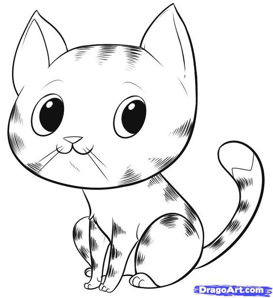 Cat Drawings | how to draw an easy cat step 6 | liy ...
