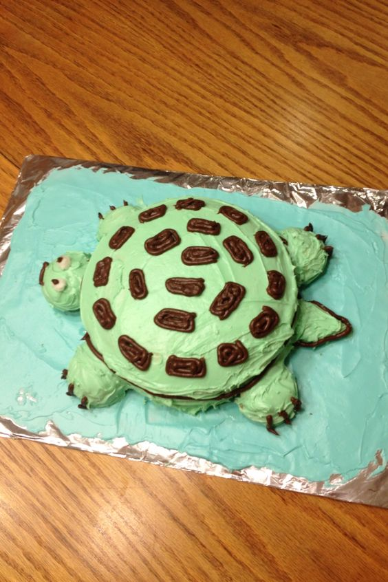 Turtle birthday cake!!! The shell is made from two circle cake and the feet and the head is made from cupcakes. The tail is made from part of the cake.