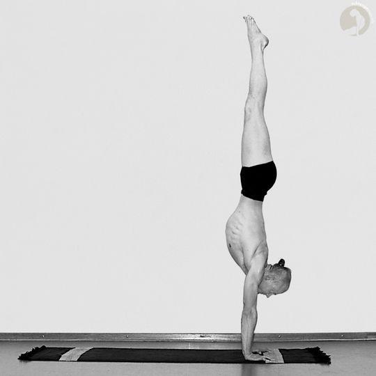 Ashtanga vinyasa yoga #yoga #hatha