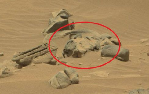 NASA's Curiosity Rover Finds Alien Remains on Mars