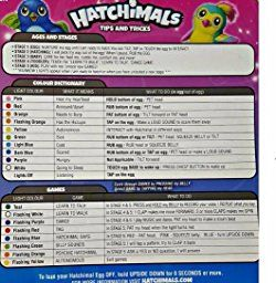 Amazon.com: Hatchimals Draggles, By Spin Master: Toys & Games