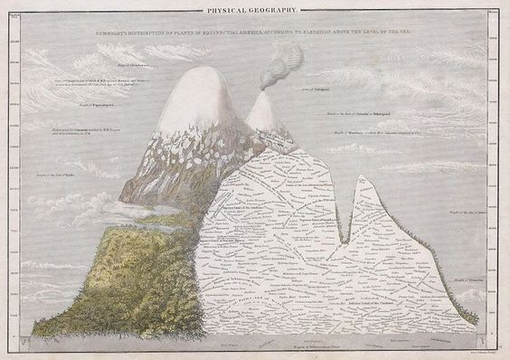 Humboldt's Distribution of Plants in Equinoctial America, According to Elevation Above the Level of the Sea (1839)