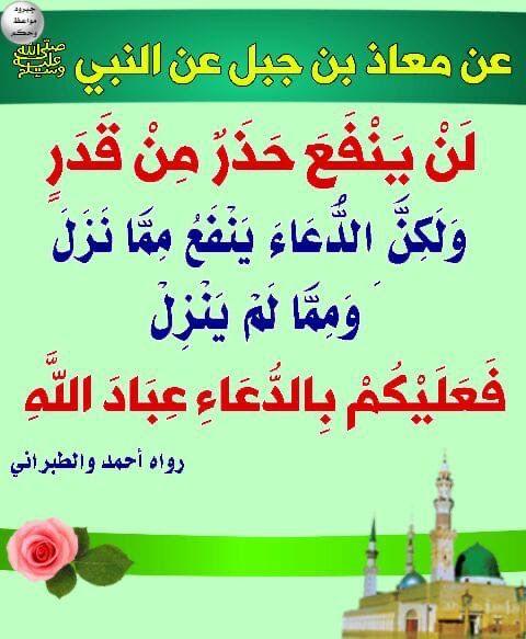 Pin By Amna Omari On أحاديث نبوية Islamic Quotes Islam Quran Duaa Islam