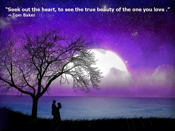 Seek Out The Heart