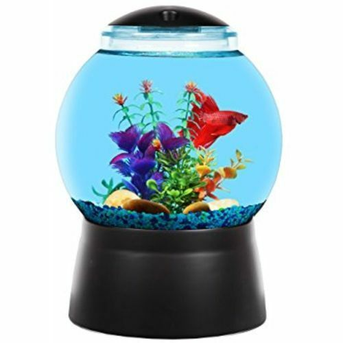 Betta Kit 2 Gallon Gumball Machine New Open Box Free Shipping Ideas Of Fish Tank Fishtank In 2020 With Images Fish Tank Mini Aquarium Betta Fish Tank