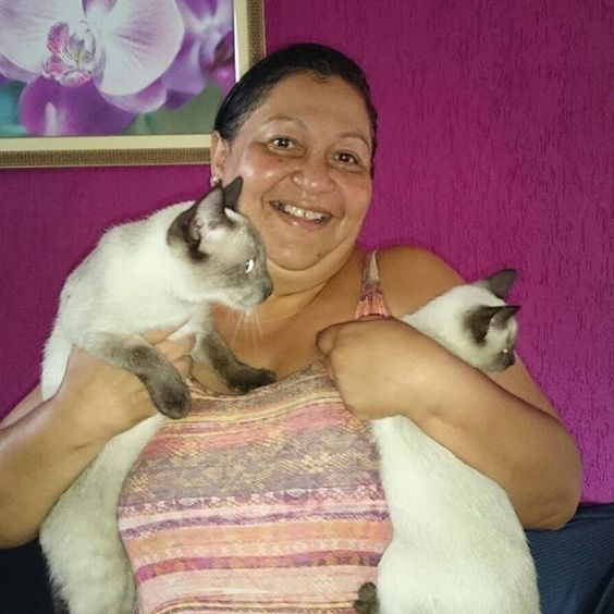 Nossa linda Jamaica, que agora é Mel, ganhou uma mini Jamaiquinha pra chamar de sua, que agora chama Mia ❤️❤️❤️ Felicidades família linda  #adoteinacatland #finalfeliz #vidanova --------------------------------------------------- www.catland.org.br www.catlandlojinha.com.br  catlandrescue@gmail.com --------------------------------------------------- #catland #gocatland #catlandrescue #instacats #catlovers #catsofinstagram #catoftheday #ilovecats #adote #adotenãocompre