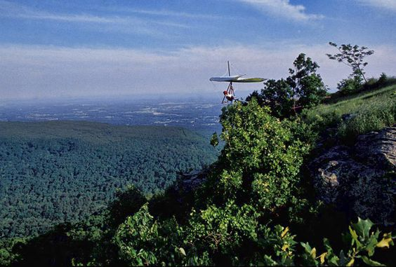 Mount Nebo State Park: Favorite Places, State Parks, Nebo State, Dream Travels, U.S. States, Places Spaces