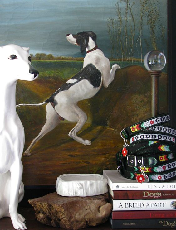 Pile Good Dog Collars onto a paper towel roll holder and surround with dog stuff. Easy to take on and off and good for theft control