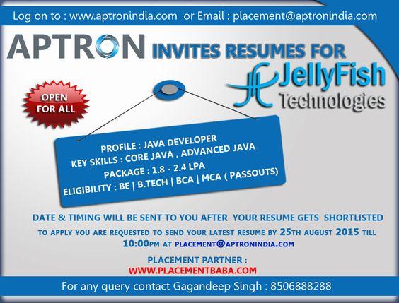 Profile  Java Developer Key Skills  Core Java, Advanced Java - java developer resumes