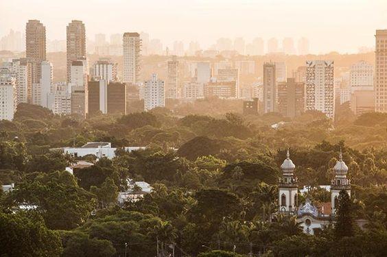 Paroquia Nossa senhora do #brasil #sp #sampa #saopaulo #saopaulocity #aerial #igreja #church #br #predios #buildings #forest #floresta #mata #cidade #brazil_repost #brazilgram_ #splovers #spdagaroa #sp4you #sunset #pordosol
