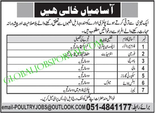 Farm Supervisor Foreman Jobs In Pakistan Jobs In Pakistan Job Job Portal