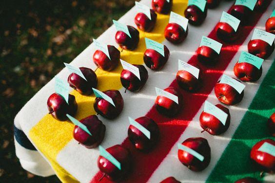 Minnesota Lodge Wedding - DIY - apples