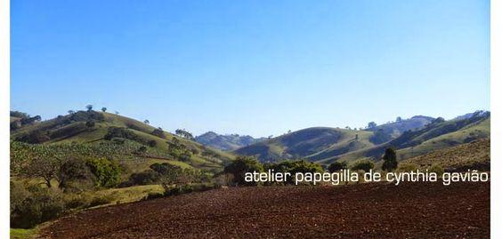 papegilla