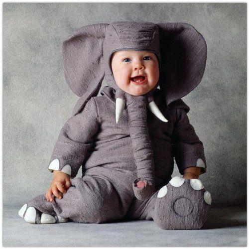 I elefante é fã do parmalat.... Haha