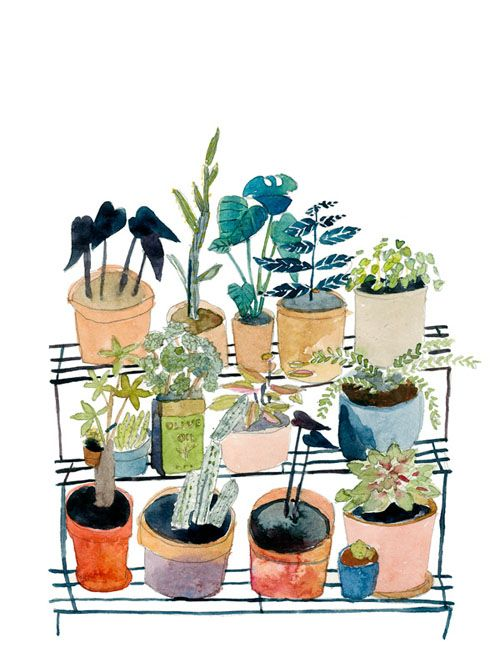 Plant Stand | Hello Polly