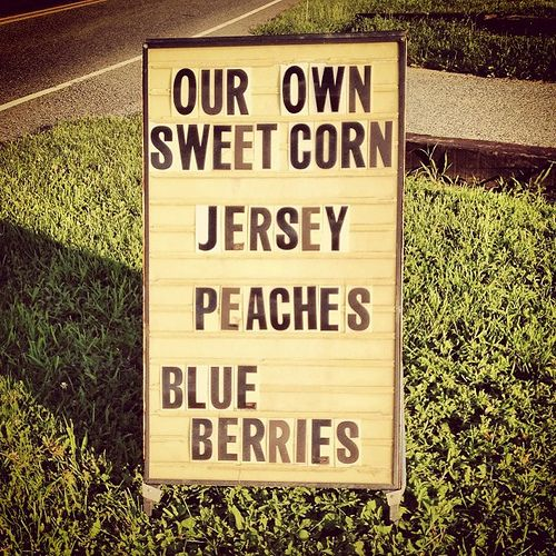 the garden state New Jersey Pinterest Gardens, Blueberries and