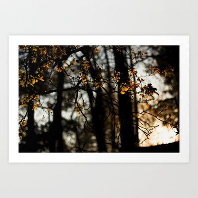 Serralves Art Print by ingz