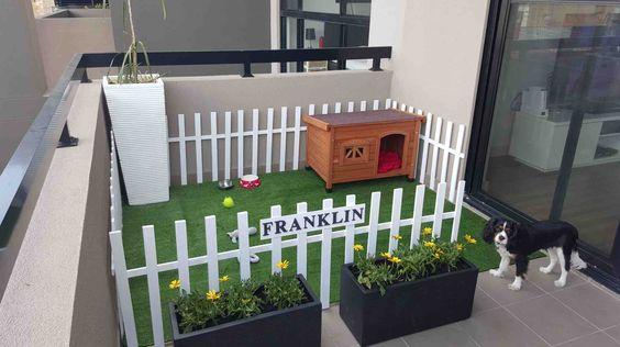 balcón área de juegos para perro