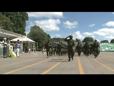 Comemoração do Dia Infantaria em Brasília