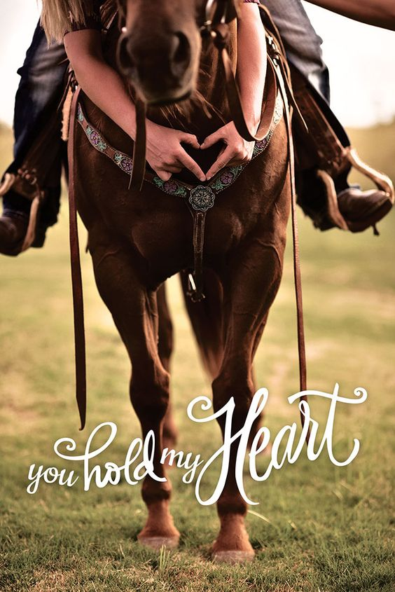 AQHA knows that you may hold the reins, but your American Quarter Horse holds your heart! #YouHoldMyHeart