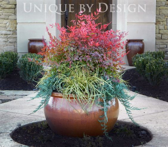 39 heavenly bamboo 39 nandina japanese sedge grass and 39 blue for Japanese planting ideas