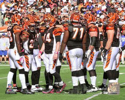 Cincinnati Bengals Photo
