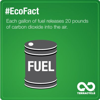 #EcoFact Each gallon of fuel releases 20 pounds of carbon dioxide into the air.  Think about what you could be doing to make this heavy impact lighter.