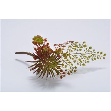 Kunstplant Succulent Varen