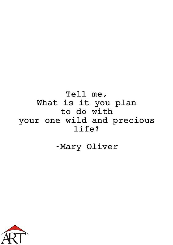 Tell me, what is it you plan to do with your one wild and precious life? - Mary Oliver  ArtHut has an article on the Pulitzer awardee who's impacted positivism into the lives of many individuals with her art, poetry.