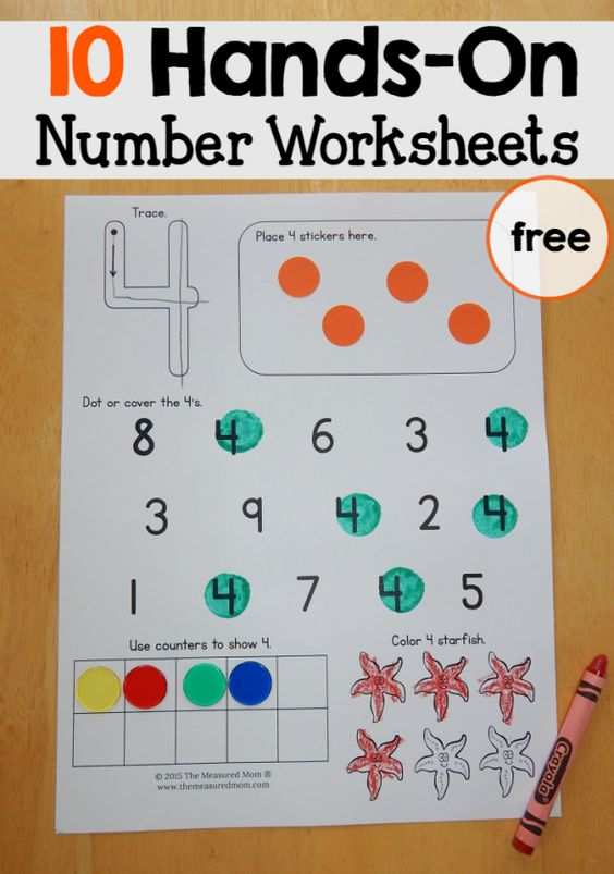These free number worksheets for preschool reinforce a variety of skills... with lots of hands-on practice!