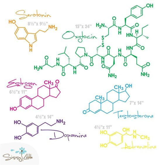 FREE Shipping  A Little Bit 'O Love  6 Molecular by SissyLittle,