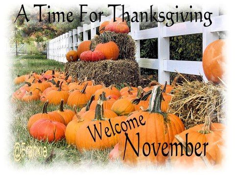 Welcome November  Time for Thanksgiving