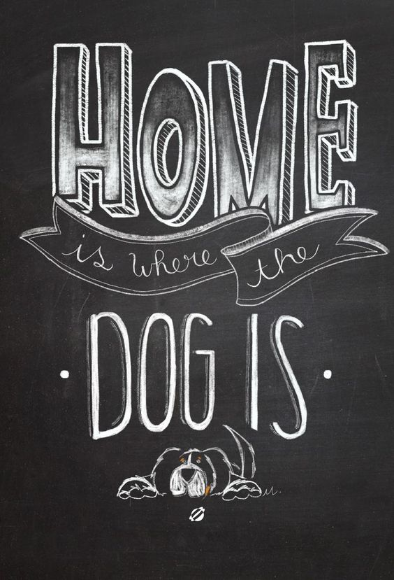 Home is where the dog is- Free Printable - Personal Use Only. #freeprintables #freeprintable: