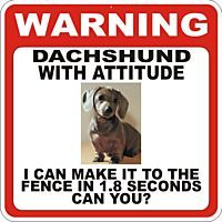 Warning: Dachshund with Attitude. I can make it to the fence in 1.8 seconds, can you?: