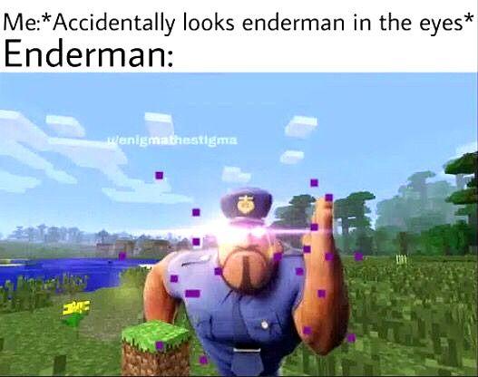 Humor Minecraft Memes Minecraft Meme Humor Funny Memes Memes Minecraft Memes